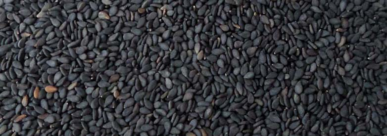 black-sesame-seeds-banner